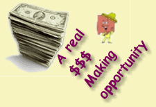 Make Some SERIOUS Money - even parttime!  Ideal for schoolteachers!